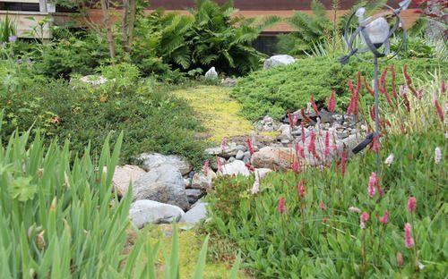 Flower Garden at Sullindeo Farm